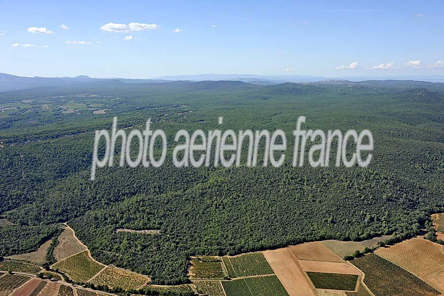 00foret-provence-5-0911