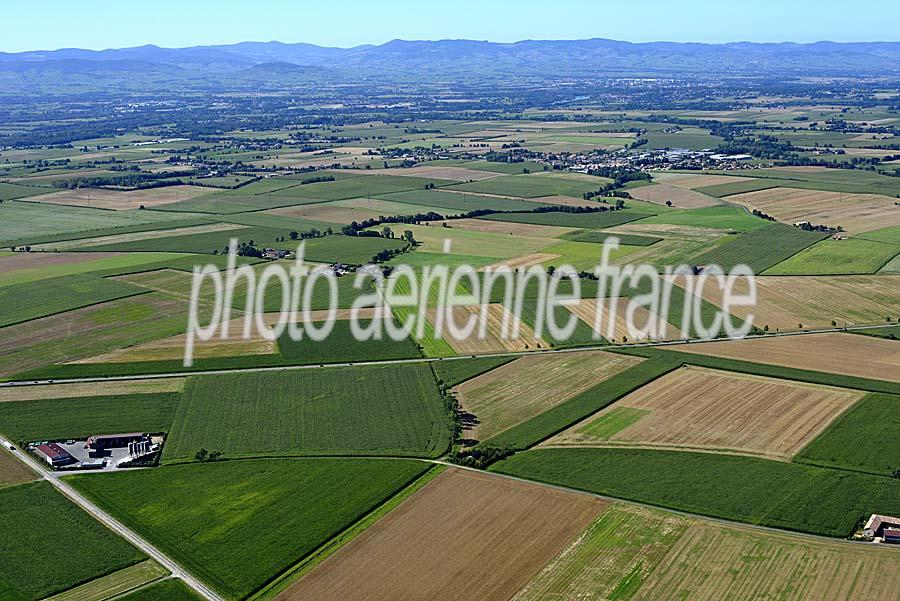 01agriculture-ain-1-0816