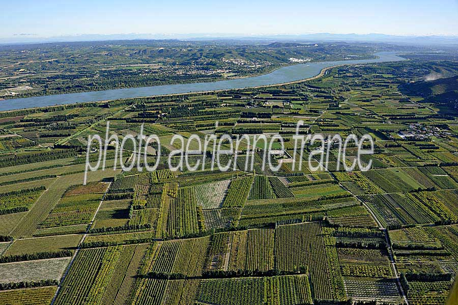 vaucluse agriculture